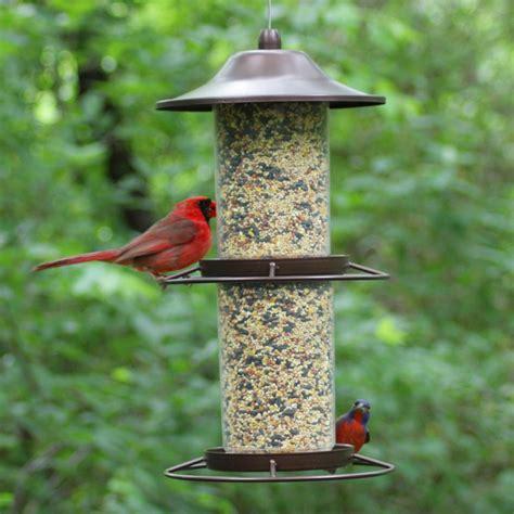 bird feeders for pet 325s panorama bird feeder