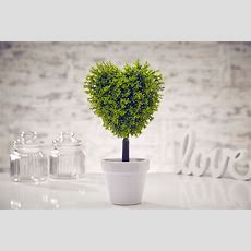 Artificial Topiary Tree Plant Garden Home Buxus Boxwood In