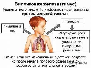 Лечение аденомы простаты в обнинске