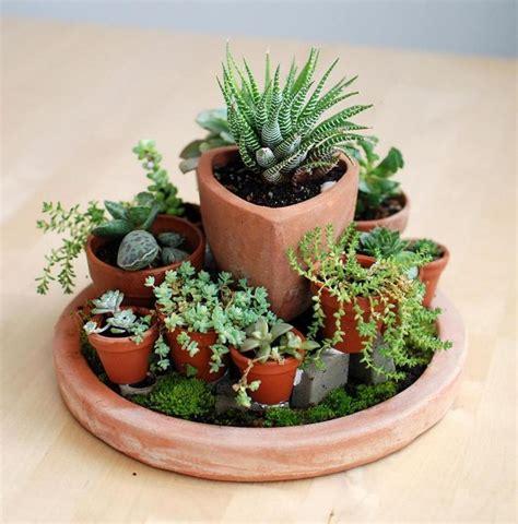 las 25 mejores ideas sobre mini jardines en pinterest y