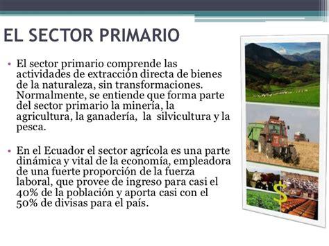 1 1 sectores primario secundario y terciario