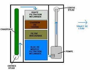 Filtration De L Eau : comparatif filtration d 39 aquarium int rieure ou ~ Premium-room.com Idées de Décoration
