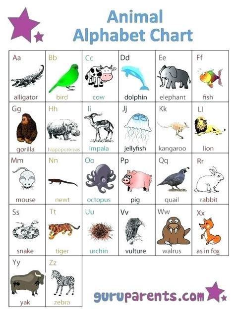 3 letter animals example of formal business letter letters free sample 20059   animals with 3 letters brilliant ideas of letter fancy three animal throughout three letter animals