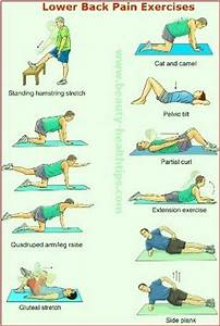 17 Best images about Lower Back Strain Exercises on ...