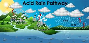 Diagram Showing Acid Rain Pathway