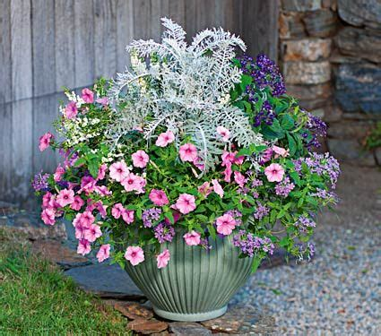 17 best images about container gardening on