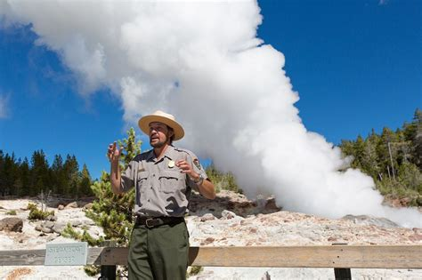 yellowstones tallest geyser awakens   dead