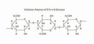 Nanocrystalline Cellulose