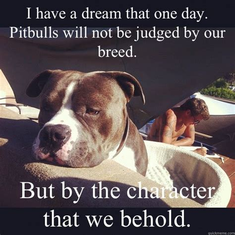 Pitbull Puppy Meme - 117 best pit bull memes images on pinterest pit bull doggies and pit bulls