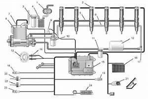 3204 Cat Engine Diagram