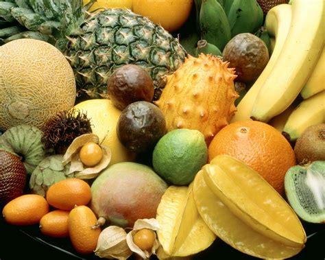 elastina e collagene quali alimenti mangiare acido ialuronico i cibi stimolano la produzione
