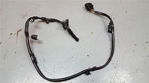 Bmw M3 Wiring Harness