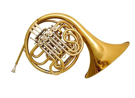 range of horn in f brass instruments p year 7 with mr boichat at