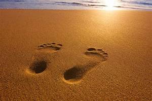 The Adventures of Peanut Butter & Jelly: Footprints In The ...