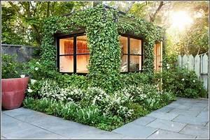 Gartenhaus Ronja 28 : bienen im gartenhaus die beste sammlung von bildern ber interieur und m bel ~ Whattoseeinmadrid.com Haus und Dekorationen