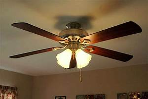 Ceiling fans feel the home