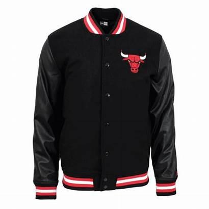 Jacket Bulls Nba Chicago Varsity Era Team