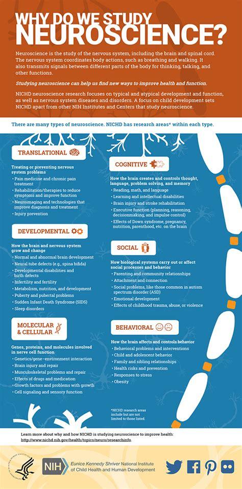 infographic    study neuroscience nichd