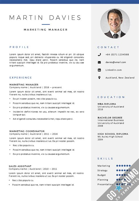 professional cv template auckland gosumo cv template