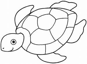 Turtle Outline Clipart - Clipart Suggest