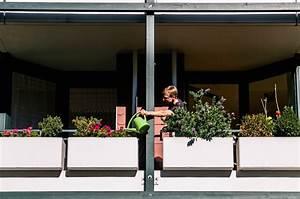Blumen Gießen Urlaub : diese plattform pflegt mit dir die beziehung zu deinen ~ Articles-book.com Haus und Dekorationen