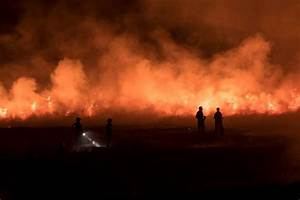 The Uk Has Already Had More Wildfires In 2019 Than Any