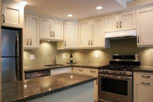 renovation ideas for kitchens renovated kitchen pictures thraam com
