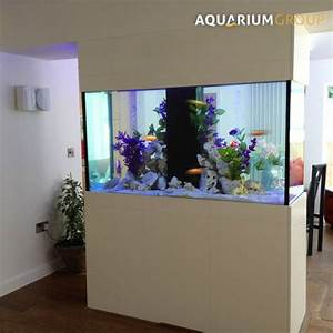 Aquarium Encastrable  U2013 25 Designs Saisissants Rep U00e9r U00e9s Dans