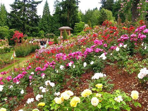 portland garden s history lies in world war i
