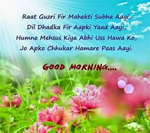 Good Morning Shayari - Morning Shayari In Hindi,English