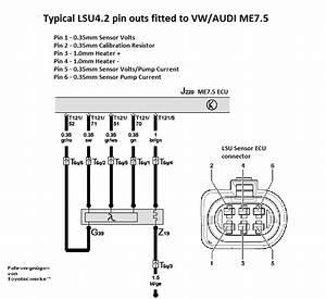 Mk4 20v Turbo Lambda Wires