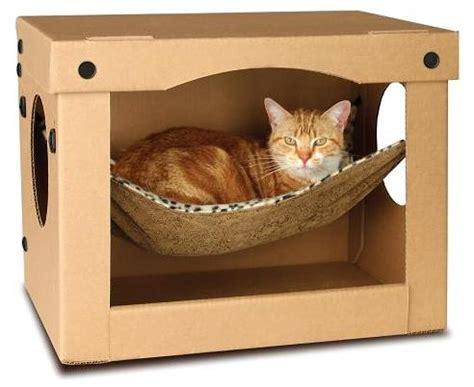 Cat In Hammock by Cat Hammock In A Box
