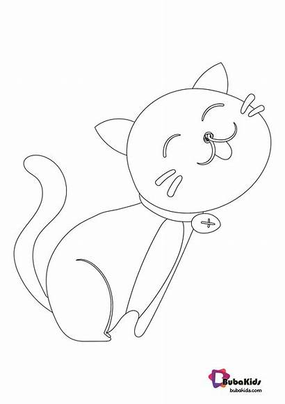Coloring Kitten Animal Bubakids Numbers