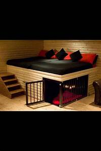 Best 25 cool beds ideas on pinterest awesome beds for How to build a nice dog house