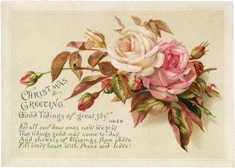 vintage christmas roses image  graphics fairy