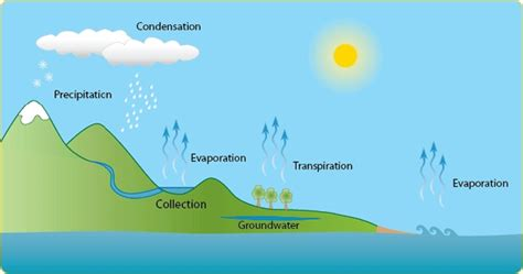 Download Free Pdfs On Water Cycle Information; Water Cycle