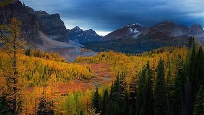 Mountain Range Forest Autumn Background Desktop Trees