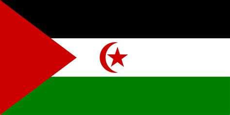 Why Do So Many Arabian Countries Have Similar Flags Black