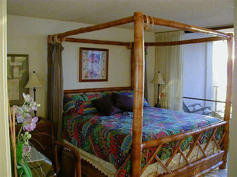 fascinating bamboo canopy beds  daybeds home