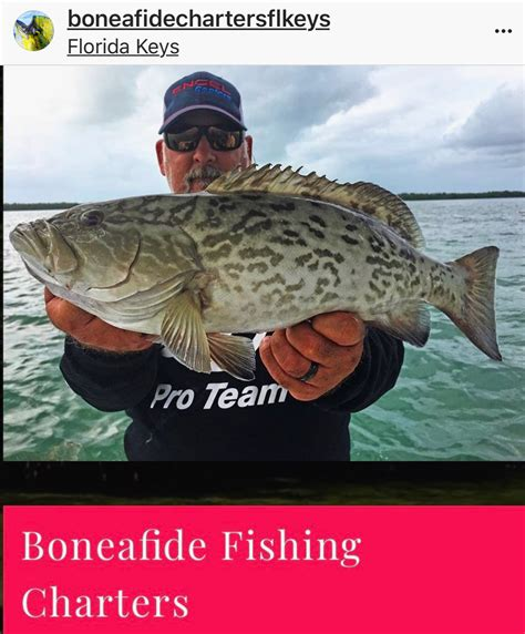 grouper keys florida season gl goo posts