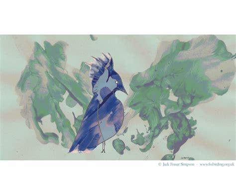 Art> Fraser's Birding Website