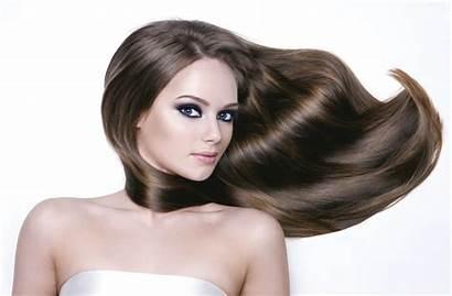 Hair Woman Young Head Beauty Brown Salon