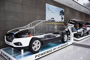 Hydrogen Fuel Cell Hyundai At Half The Price In 2018