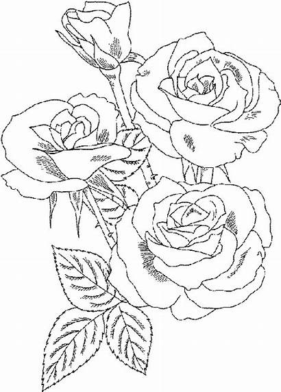 Coloring Pages Colouring Printable