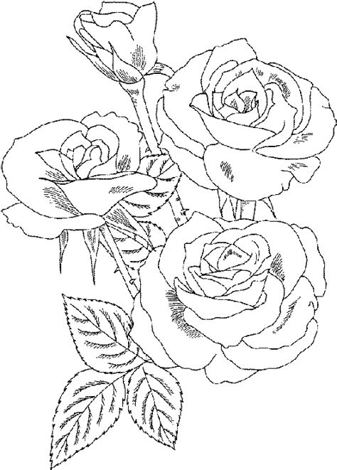 Black and white pattern for coloring book for adults. Roses Coloring Pages   Coloring Pages To Print
