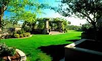 backyard landscape pictures Backyard Landscaping - Phoenix, AZ - Photo Gallery ...