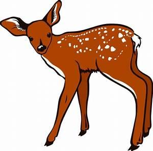 Fawn Clip Art at Clker.com - vector clip art online ...