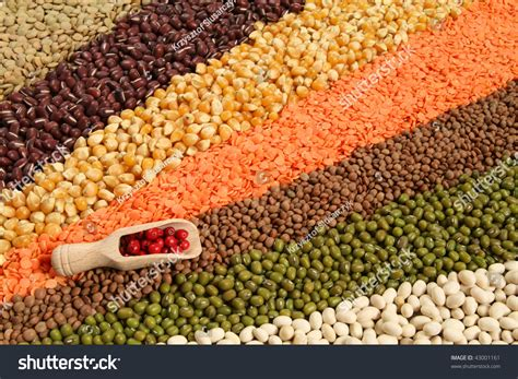 cuisine decorative variety beans cereals colorful cuisine waves stock photo
