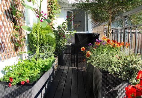 Balkon Sichtschutz Aus Pflanzen