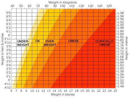 body mass index  symptoms treatment body mass index